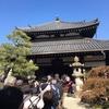 信行寺特別公開と「若冲の京都 KYOTOの若冲」展