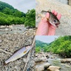 テンカラ釣行記:2020年6月下旬の姫川支流にて、不意の出会いの良小渓