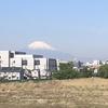 【アラ還さんぽ】富士山が楽しめる湘南モノレールと。