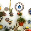 南スペインはガーデニングの楽園2 植木鉢編