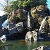 鮎壺の滝 〇溶岩石から吹き出す水の奔流