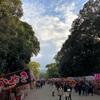 歴史に魅了されます。奈良は良いですね〜!運動するにも最高ですよ。