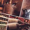 オーストラリアワインの歴史。。歴史は長いのでまずは「その1」