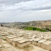 【エルサレム】嘆きの壁やオリーブ山へ(中東旅行5日目)