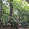 勝俣部長の「ため息」1345・・・・負の 助け合い