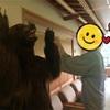 【秋田県・北秋田市】オススメ宿! 打当温泉『マタギの湯』はクマまみれのワンダーランドでしたヽ(*´∀`)ノ