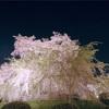 【京都旅行ブログ】世界遺産「清水寺」周辺で行くべき観光スポット4選【大人の休日・デートにも】