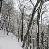 元日に2019年の初・山歩き