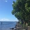 ハワイでビーチクリーン