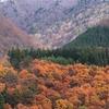 飛騨の秋景色 【小鳥峠~荘川~白川郷】 vol 5