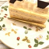 カロリーの高そうなバタークリームにはまっている〜神戸のパティスリーショウタニ