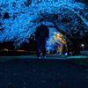 【Twitter】会津に住むおじさんの4月のつぶやきをまとめました。【桜満開】