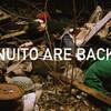 NUITOというバンドを再開した その1