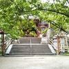 梅雨だからこそ旅行~初夏の奈良・京都