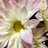 (東京)10月 「天宮光啓塾 生かせいのち」(生き方塾:呼吸法・瞑想法・法話会)ありがとうございました (*^人^*)