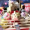 ハニーズ納涼祭🌟🌟🌟シーズン2第15回 遊ぶなり✨