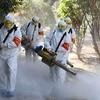 危険な感染症の種類と歴史【SARS・MERS・新型コロナウイルスなど】