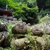 嵐山アクシデント・ラン