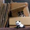 パンダだらけの部屋。