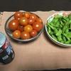 今日は最後の夏野菜