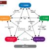 2021/03/12 データマネジメント成熟度のフレームワークに何を使えばよいか