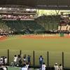 【スタジアム観戦記】首都圏の5球場を徹底比較。シチュエーション別お勧スタジアムを教えます