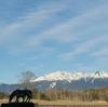雪景色の御嶽山(御岳山)・2021年4月06日②