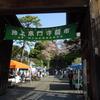 毎月恒例、池上本門寺の朝市に行ってきました!