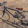 コロナウイルスの影響によって、自転車の需要が高まっていることへの考察