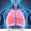 肺雑音の聴診についてです。