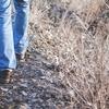 末梢動脈疾患の歩行障害の改善に必要なのは○○で歩くこと