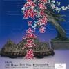 大阪天満宮の梅と梅まつり2017。見ごろや開花情報。