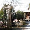 光田庭園(高烏台公園)