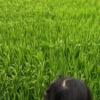 【コロナ禍】夏の田舎帰省の素晴らしさを伝えたい