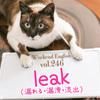 【週末英語#246】情報をリークするのリークは「leak」