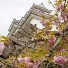 【写真で観光】5月の鶴ヶ城公園を散策したら新緑の草花に癒された..!&美味しいもの紹介