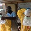 エボラ出血熱を正しく怖がるために——(1)へのコメントにお返事するなど