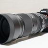 「α7Ⅲ×MC-11×SIGMA100-400mmライトバズーカ」の相性。連写や使えるフォーカスエリアなど。