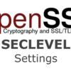 OpenSSL SECLEVELによるwrong signature typeエラーの概要