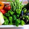 「もったいないキッチン」で廃棄食材ゼロ目指す!余った食材で絶品創作料理!
