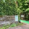 山梨県 「さかな公園」は名脇役!家族連れで山中湖周辺に来たら訪れるべし!
