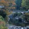 秋の面河尾根へ 前編