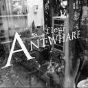 きょうのアント2 / fleur ANTWHARF