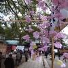 【日常】葛飾八幡宮 三十三周年式年大祭