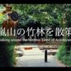 【京都vlog】嵐山の竹林と夏鳥であるカッコウの囀り(さえずり)、これ以上の癒しはあるのでしょうか?