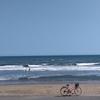 無料で良い波を探すには?(。´・ω・)?