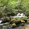 ハイキング 奥入瀬渓流~蔦沼へ