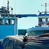 漁業者反発!福島第一原発のトリチウムを2023年海洋放出決定!