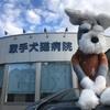 【謝謝!】¥550で頂いた安心…の話( ˘ ˘)