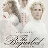 映画『The Beguiled/ビガイルド 欲望のめざめ』を観る